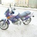 P7070060.JPG.jpg